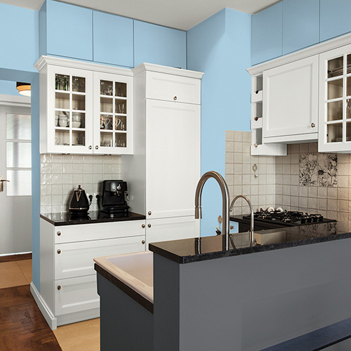 Light Colored Kitchen Cabinets: Interior & Exterior