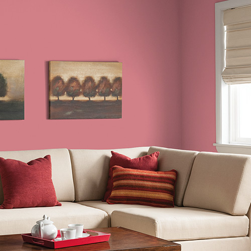 Small Living Room Ideas Passionate Pink
